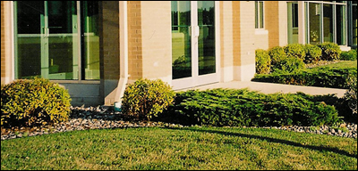 Lawn Care Maintenance services Wisconsin
